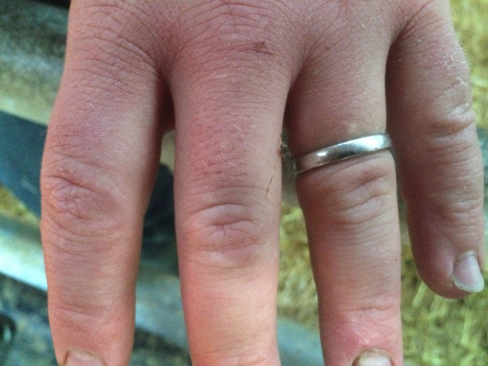 Verloren Trouwring in Geel Belgie